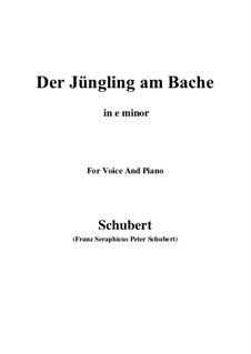 Der Jüngling am Bache, D.192: For voice and piano (e minor) by Franz Schubert