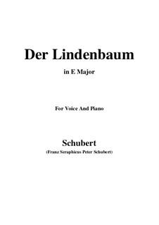 Nr.5 Der Lindenbaum: Für Stimme und Klavier (E Major) by Franz Schubert