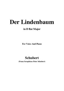 Nr.5 Der Lindenbaum: For voice and piano (D flat Major) by Franz Schubert