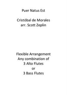 Puer Natus Est: For flute trio by Cristóbal de Morales
