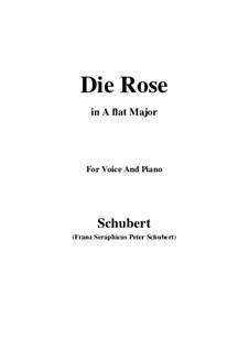 Die Rose, D.745 Op.73: Für Stimme und Klavier (A Flat Major) by Franz Schubert