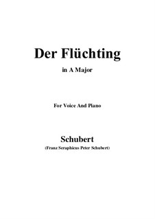 Der Flüchtling, D.402: A-Dur by Franz Schubert