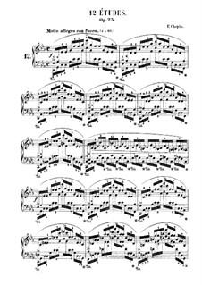Nr.12 in c-Moll: Für Klavier by Frédéric Chopin