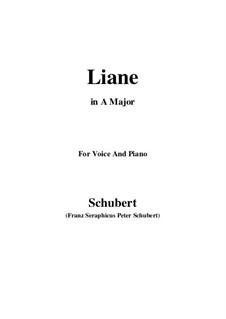 Liane, D.298: A-Dur by Franz Schubert
