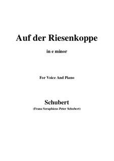 Auf der Riesenkoppe, D.611: E minor by Franz Schubert