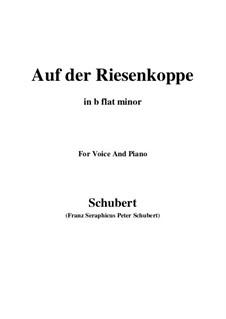 Auf der Riesenkoppe, D.611: B flat minor by Franz Schubert