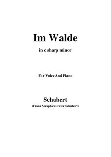 Im Walde, D.834 Op.93 No.1: For voice and piano (c sharp minor) by Franz Schubert