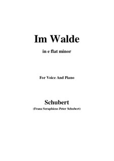 Im Walde, D.834 Op.93 No.1: For voice and piano (e flat minor) by Franz Schubert