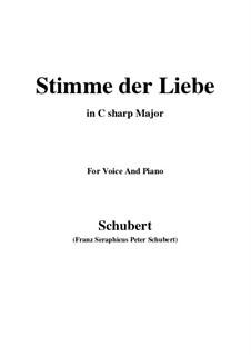 Stimme der Liebe (Meine Selinde!), D.412: For voice and piano (C sharp Major) by Franz Schubert