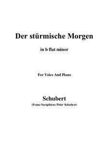 Nr.18 Der stürmische Morgen: For voice and piano (d minor) by Franz Schubert