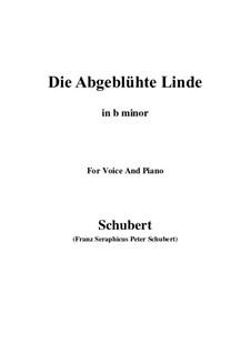Die abgeblühte Linde, D.514 Op.7 No.1: B minor by Franz Schubert