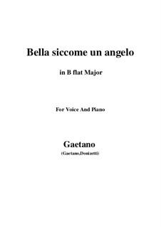 Don Pasquale: Bella siccome un angelo (B flat Major) by Gaetano Donizetti