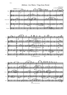 Alleluia - Ave Maria - Virga Jesse floruit: For wind quintet by William Byrd
