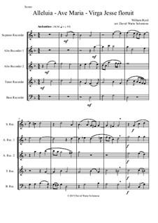 Alleluia - Ave Maria - Virga Jesse floruit: For recorder quintet by William Byrd