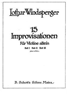 Fünfzehn Improvisationen für Violine Solo: Fünfzehn Improvisationen für Violine Solo by Lothar Windsperger