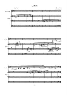 Cebex for Bass Clarinet and Organ, MVWV 1201: Cebex for Bass Clarinet and Organ by Maurice Verheul