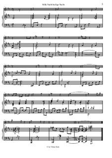 Stille Nacht, heilige Nacht, für Zwei Instrumente: Für Querflöte und Klavier by Franz Xaver Gruber