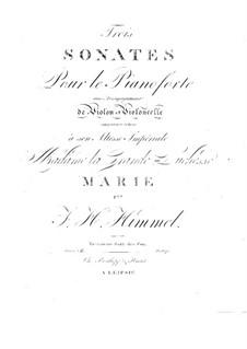 Drei Sonaten für Violine, Cello und Klavier, Op.16: Sonate Nr.2 in g-Moll by Friedrich Himmel