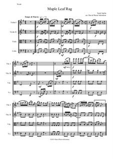 Maple Leaf Rag: Für Streichquartett by Scott Joplin