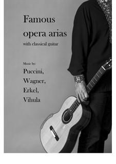 Famous opera arias with classical guitar: Famous opera arias with classical guitar by Richard Wagner, Giacomo Puccini, Ferenc Erkel, Mihajlo Vihula