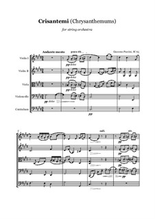 Chrysanthemums (I Crisantemi): For string orchestra, score and parts by Giacomo Puccini