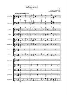 Sinfonetta Nr.1 – 1.Satz, Op.23: Sinfonetta Nr.1 – 1.Satz by Jürgen Pfaffenberger