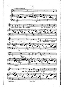 Nr.12 Am leuchtenden Sommermorgen: Klavierauszug mit Singstimmen by Robert Schumann