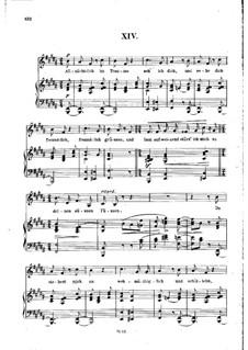 Nr.14 Allnächtlich im Traume: Klavierauszug mit Singstimmen by Robert Schumann