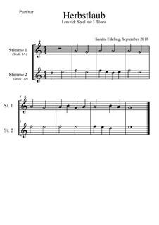 Herbstlaub: Für 1 Sopran- und 1 Altblockflöte by Sandra E.