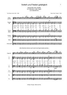 Verleih uns Frieden gnädiglich: Für Chor, Streicher und Orgel (Partitur) by Klaus Thewes