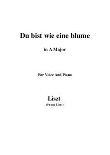 Du bist wie eine Blume, S.287: A-Dur by Franz Liszt