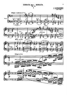 Klaviersonate Nr.1 in d-Moll, Op.28: Movement 1 by Sergei Rachmaninoff
