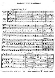 Einundzwanzig Gedichte von Nekrasov, Op.62: Nr.21 In der Heimath by César Cui