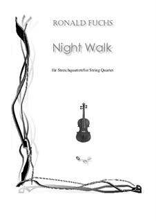 Night Walk: Night Walk by Ronald Fuchs