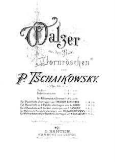 Walzer: Für zwei Klaviere, achthändig – Klavierstimme II by Pjotr Tschaikowski