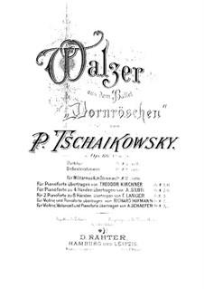 Walzer: Für zwei Klaviere, achthändig – Klavierstimme I by Pjotr Tschaikowski