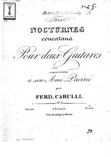 Drei Konzertnocturnen für zwei Gitarren, Op.143: Nocturne Nr.3 by Ferdinando Carulli