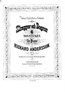 Skuggor och Dagrar, Op.14: Skuggor och Dagrar by Richard Andersson
