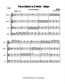 Sonate für Violine Nr.3 in a-Moll, BWV 1005: Bearbeitung für Streichquartett by Johann Sebastian Bach