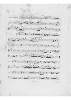 Variationen über Thema 'Là ci darem la mano' aus 'Don Giovanni' von Mozart, Op.2: Flötenstimme I by Frédéric Chopin