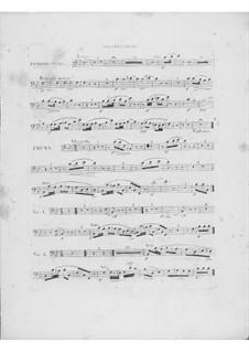 Variationen über Thema 'Là ci darem la mano' aus 'Don Giovanni' von Mozart, Op.2: Fagottstimme I by Frédéric Chopin