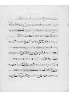 Variationen über Thema 'Là ci darem la mano' aus 'Don Giovanni' von Mozart, Op.2: Fagottstimme II by Frédéric Chopin