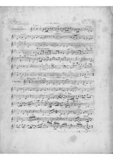 Variationen über Thema 'Là ci darem la mano' aus 'Don Giovanni' von Mozart, Op.2: Violinstimme I by Frédéric Chopin