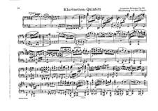 Quintett für Klarinette und Streicher in h-moll, Op.115: Version für Klavier, vierhändig by Johannes Brahms