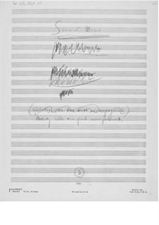 Sommermusik: Skizzen by Ernst Levy