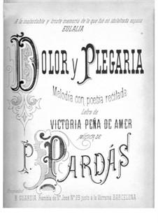 Dolor y Plegaria: Dolor y Plegaria by Primitivo Pardás y Font