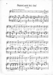 Büaberl, mirk dir's fein, Op.22: Büaberl, mirk dir's fein by Thomas Koschat
