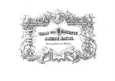 Klaviertrio Nr.39 in G-Dur, Hob.XV/25: Version für Klavier, vierhändig by Joseph Haydn