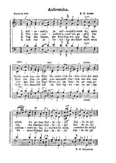 Die Auferstehung: Klavierauszug mit Singstimmen by Karl Heinrich Graun