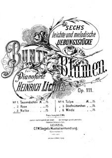 Bunte Blumen, Op.111: Nr.3 Nelke by Heinrich Lichner